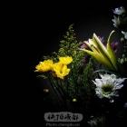 鲜花迎新年