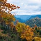 万山红遍 层林尽染