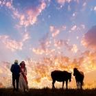 草原的晚霞