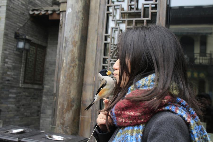 小鸟与美女亲嘴!