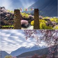 西藏纪 .林芝...